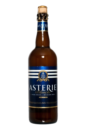 Asterie (pack of 12)
