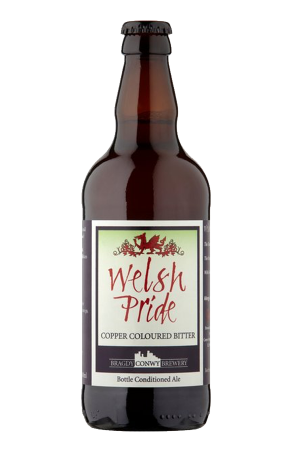 Welsh Pride (pack of 12)