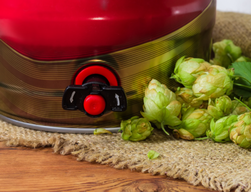 The Ultimate Guide To A Beer Party (With Recipes To Make It BIG)